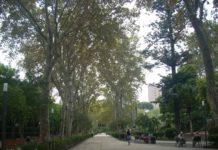 villa Bellini, verde