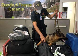 APERTURA-HASHTAG-SICILIA-NEWS-NOTIZIE-GIORNALE-ONLINE-OGGI-NOTIZIA-DEL-GIORNO-REDAZIONE-AEROPORTO-DI-CATANIA-DROGA-EROINA